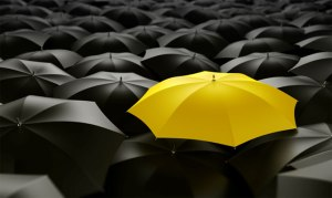Do ever struggle to differentiate yourself from competitors